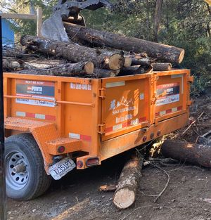 Free free free !!!!!!!!!!Good clean firewood free free free for Sale in Gig Harbor, WA