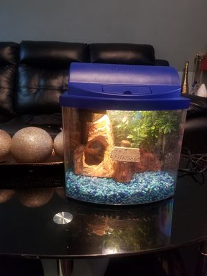 Fish tank for Sale in Lynn, MA