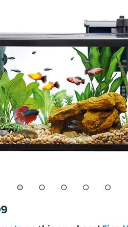 Top Fin Aquarium With LED Light and Filter Cartridges for Sale in Puyallup,  WA