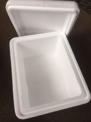 Disposable Foam Cooler for Sale in Chicago, IL