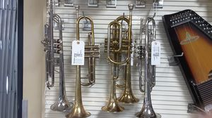 Trumpetts for Sale in St. Petersburg, FL