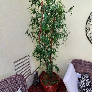 Artificial / Fake / Indoor/ Outdoor Plant/tree for Sale in Garden Grove, CA