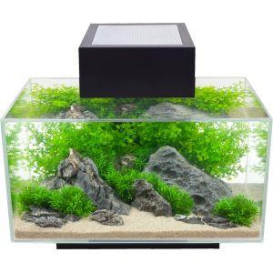 Fluval Edge 6 Gallon Nano Aquarium for Sale in Tega Cay, SC