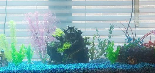 Fish Tank 55 Gallon Aquarium for Sale in Fort Worth,  TX
