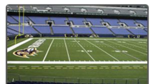 SINGLE Ravens PSL - Lower Level Sideline, Great View for Sale in Baltimore, MD