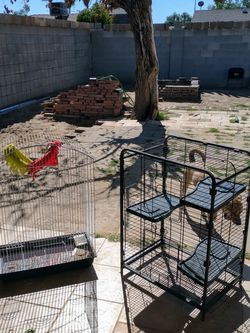 Bird Cages $15 each for Sale in Phoenix,  AZ