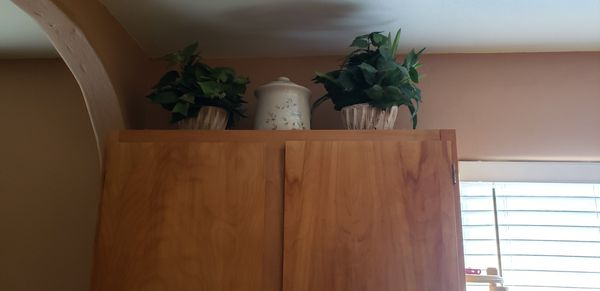 fake plants and glass jars