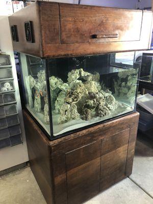 90gal cube saltwater aquarium fish tank Plug & Play for Sale in Los Angeles, CA