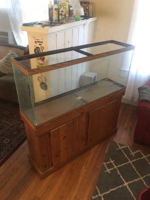 55 gallon aquarium for Sale in Tampa, FL