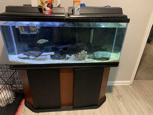 75 gal fish tank for Sale in Franklin, TN