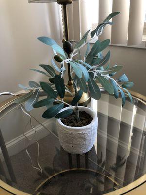 Beautiful fake olive plant for Sale in Alexandria, VA