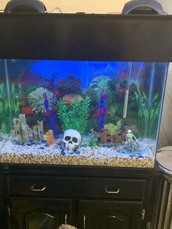 37 gallon Tall Fish Tank for Sale in Cleveland,  OH