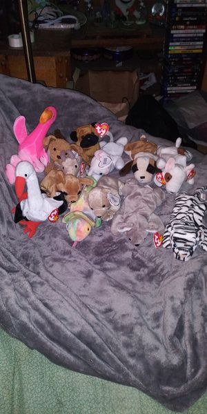 Ty Beanie Babies Lot number 1 for Sale in Menasha, WI