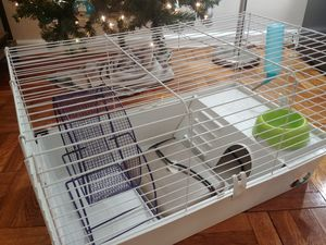Guinea Pig/Gerbil/Hedgehog Cage and Accessories for Sale in Washington, DC