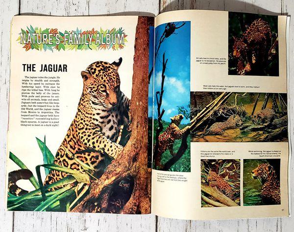 Vintage Disney Magazine September Issue 1976 - Very Good Condition