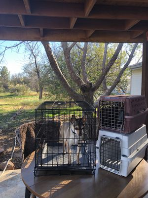 Small kennel and carriers for Sale in Tonto Basin, AZ