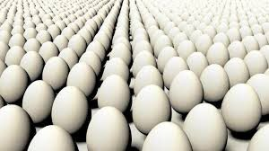 Duck eggs 2 per dozen for Sale in Robards, KY