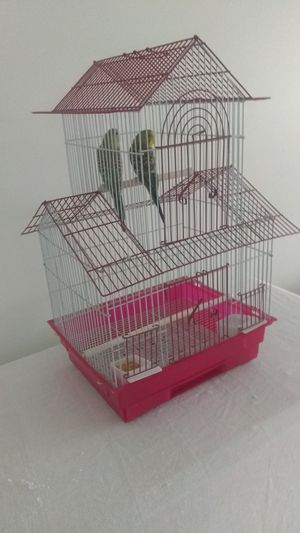 😀 WOW...BIRD CAGE...EVERYTHING GOES !!! for Sale in Melrose Park, IL