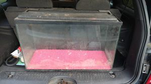 28 gallon fish tank for Sale in Washington, IL