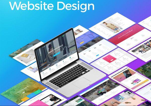 Profesional Web Site Designer