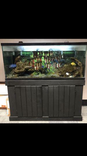 GORGEOUS FISH 🐠 TANK /AQUARIUM 75 GALLONS for Sale in Phoenix, AZ