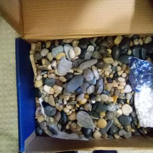 Aquarium Rocks for Sale in Salem, NH