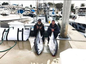 🐟🐟🐟KUTA SOFT SIDED COOLERS AND FISH BAGS for Sale in Carlsbad, CA