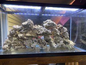 Aquarium reef rock for Sale in Franklin Park, IL