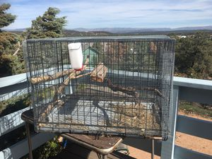 Cage / kennel for Sale in Payson, AZ
