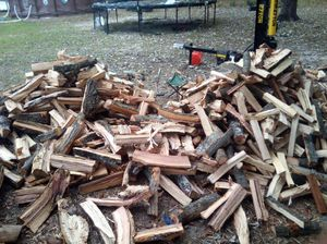 Fire Wood for Sale in Hephzibah, GA