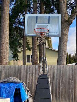 Basketball Hoop for Sale in Mountlake Terrace,  WA