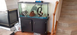 55 Gallon Fish Tank for Sale in Gainesville, VA
