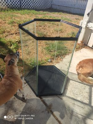 20 gallon hexagon aquarium for Sale in Riverside, CA