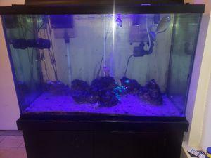 150 gallon aquarium for Sale in Hurst, TX