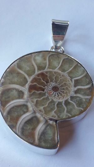 Large Nautilus Pendant for Sale in Leavenworth, WA