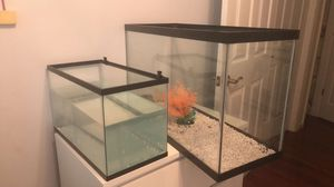10 glo-fish gallon fish tank with 2type lights and filter for Sale in Reston, VA
