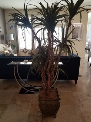 Nice tall faux plant for Sale in Peoria, AZ