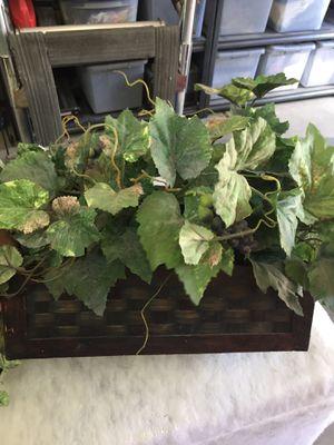 Fake boxed plants for Sale in Avondale, AZ