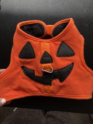 pumpkin dog vest $5 for Sale in Altoona, IA