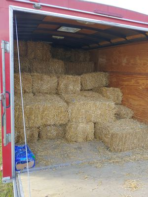 Straw bails. for Sale in Parma, OH
