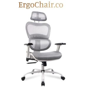 Free Shipping! Ergonomic Mesh Office Chair with Adjustable Armrest and Headrest for Sale in Tempe, AZ