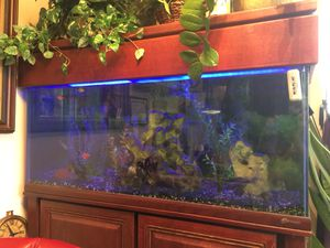 100 Gallon Fish Tank for Sale in Chicago, IL