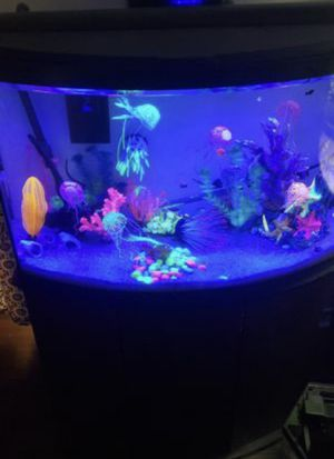 46 gallon bow front & stand, decor, sand, filters, heaters the works for Sale in Dallas, TX