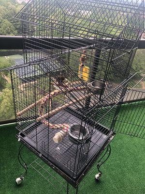 Big bird cage for Sale in Tysons, VA