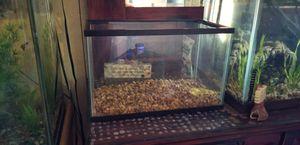 Bare 5 gallon tank with new tan gravel for Sale in Wapato, WA