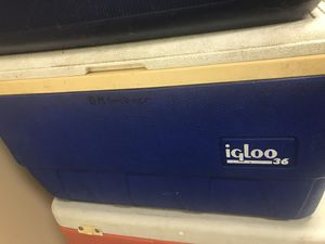Igloo 36 Cooler for Sale in Orlando, FL
