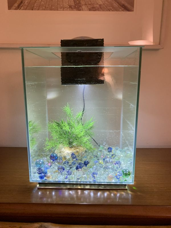 FLUVAL Chi Aquarium, 5 gallon with all the bells & whistles! $25 Steal of a Deal!