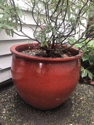 Large ceramic planter for Sale in Bellevue, WA