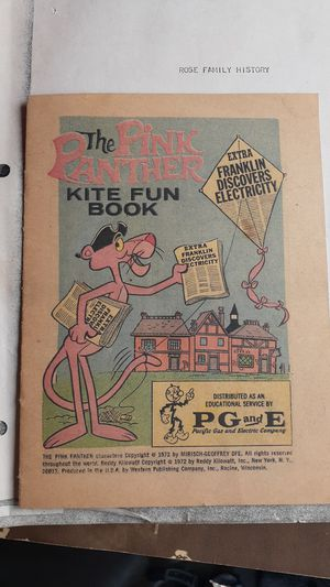 The pink panther kite fun book for Sale in West Sacramento, CA