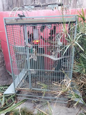 Bird Cage for Sale in West Hollywood, CA